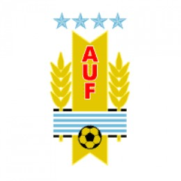 Official Name: Asociacin Uruguaya de Ftbol plays in FICA 2010 Worldcup 2010