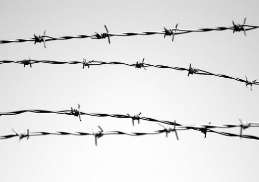 World war one the jump in evolution of warfare