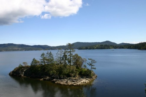 Sooke, BC - Ecotourism around Victoria, BC include: hiking, biking, kayaking, sailing, bird watching, whale watching and wildlife viewing... on and off the water.