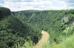 Big Bend Overlook