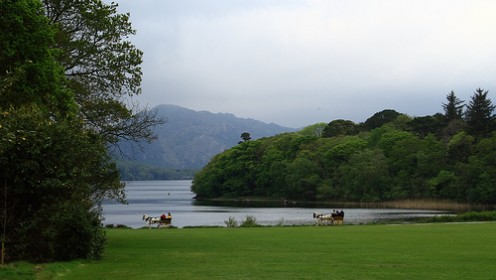 Muckross Lake, Killarney National Park. Photo by jmenard48 (flickr)
