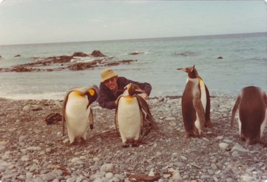 Friendly littler critters.  If you get down low they think you're a penguin too