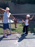 My kids always love seeing the giraffes at the zoo.