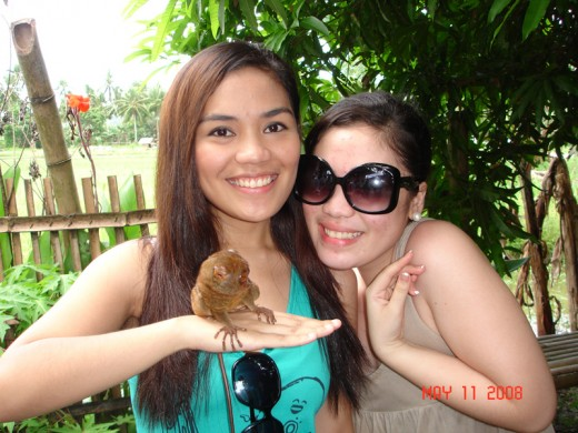 my daugthers sarah and justine enjoying the tarsier