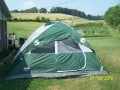 Buy Camping Tent - Coleman Oasis camping tent review