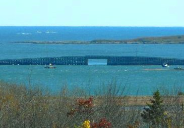 The view from Cooks Point including the bridge and open ocean beyond.