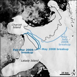 In 2008, the Wilkins Ice shelf in Antarctica collapsed and was released into the sea.