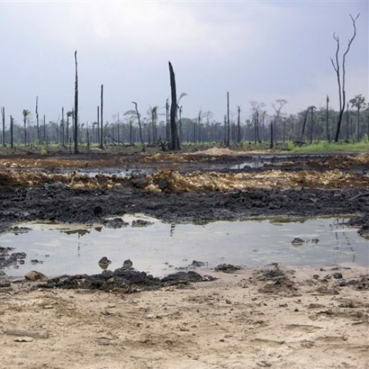 The Shell oil spill in Nigeria has been ongoing for the last 50 years ruining jungle, agricultural land and waterways. Hundreds of millions of gallons of oil have spilled and continue to spill. This has been kept out of the public eye and anyone who