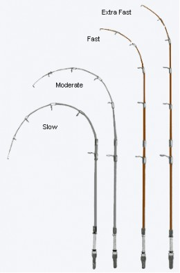 Saltwater Fishing Rods-Know How to Choose the Best ...