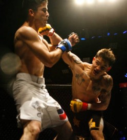 The 10 Quickest Fights In MMA History!