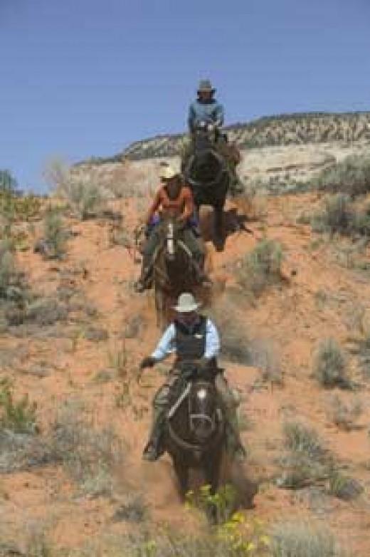 (ridingtours.com)