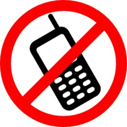Should Drivers Be Prohibited From Using Cell Phones
