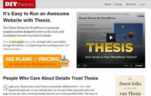 Thesis Theme for Wordpress homepage