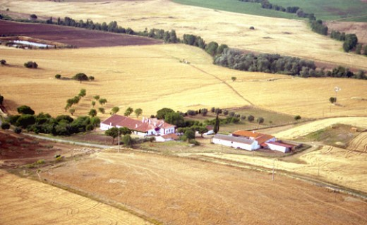 Typical Alentejo farm villa