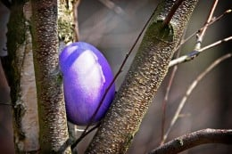 Easter Purple Egg