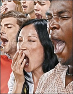 Contagious yawning = maintaining group vigilance