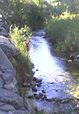 Fresh Living Water