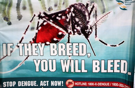 A government campaign poster to stop dengue (photo courtesy of rooymans2000@flickr).