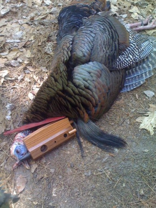 The Original Combo Call 2010 Spring Turkey Season