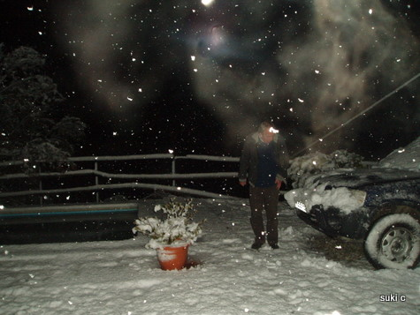 Midnight - snow settling around the swimming pool