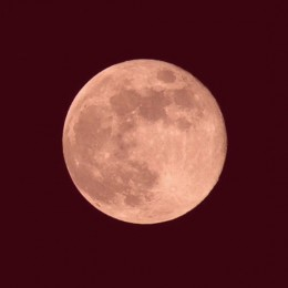 The Bible mentions a moon that is as red as blood. We saw such a moon recently in the June 26th, 2010. The moon is mentioned in this condition in the book of Revelations.