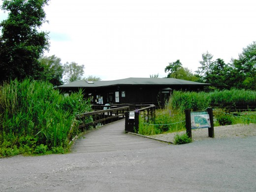 Mere Sands Wood Visitor centre. Photograph by D.A.L.