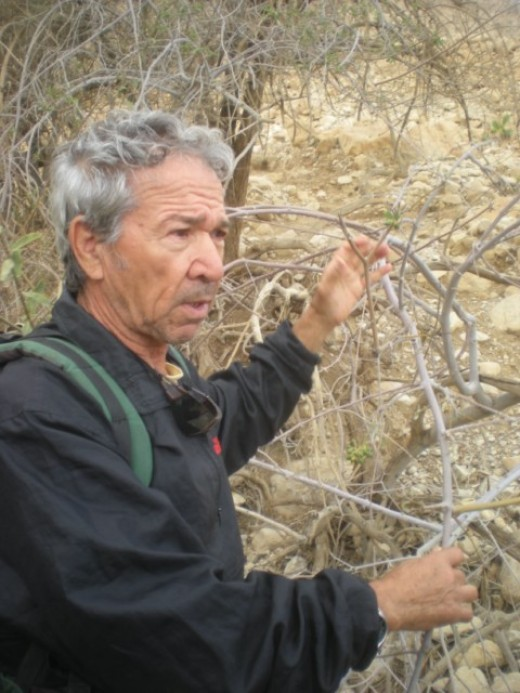 Dr. ELI RAZ, leading geologists on DEAD Sea Sinkhole Project (Photo courtesy of http://funjoelsisrael.com/)