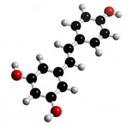 Resveratrol Molecules Chain