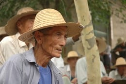 Chinese Farmer picture