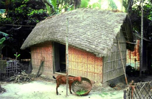 Choti Bangla Online Desi...