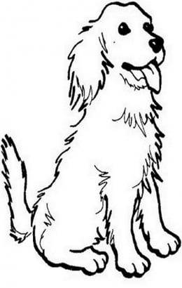 childrens coloring pages springer spaniel | Sketches Of Springer Spaniels Coloring Pages