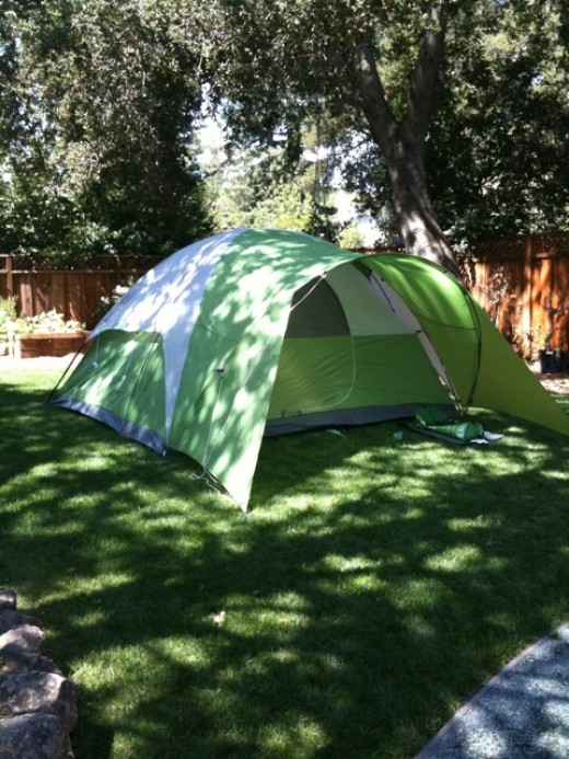 6 man tent set up in the backyard