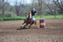 Turn In Burn: Basics of Barrel Racing