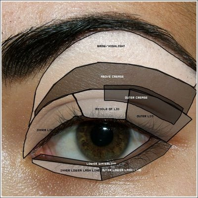 This will help you understand your makeup territory better  Between this is not my eye :P