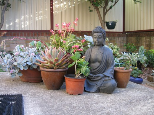 No, I'm not a Buddhist.  Statues like this do look good in a garden, though...