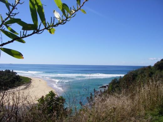 Clear sky and a dark blue ocean amid Australian vegetation