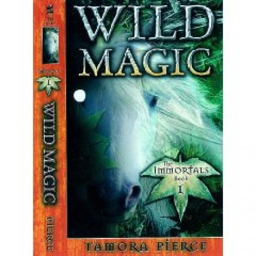 "Another cover design for ""Wild Magic"""