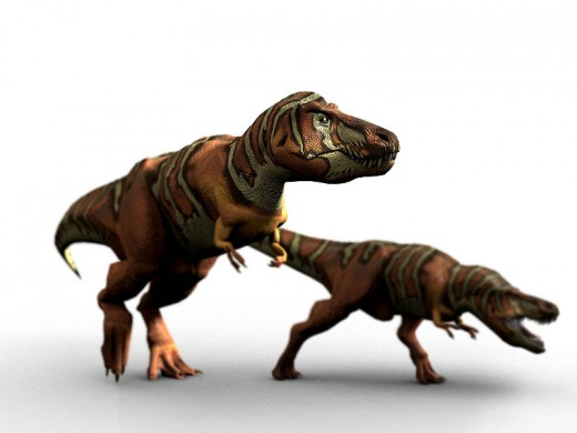 Image of a pair of T.rex. They would probably have enjoyed a Triceratops snack.