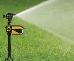 How Motion Activated Sprinklers Work