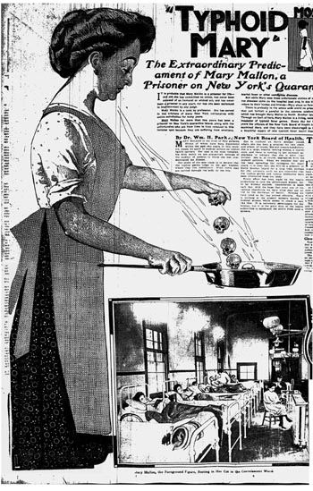 "MARY MALLON OR  ""Typhoid Mary"" as depicted in a 1909 newspaper"