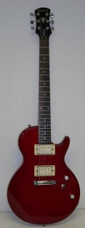 Have fairly good reviews on HC. Mahogany body, two direct-mount humbucking Alnico5 pickups, added comtort cut.