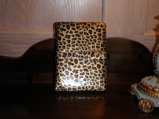 This is the outside of my second fav Kindle cover, I love this one because you can't get anything on it, no fingerprints show and if you splah something by mistake it wipes right off.  It's made of patent leather.