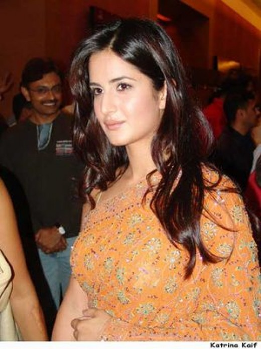 Katrina Kaif Hot Photo  Katrina Kaif In Saree Photo-9394