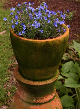 An old style pot can make the make plants appear more natural and give a lovely antique appearance to the setting.