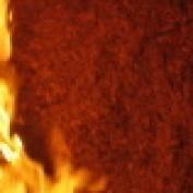 tommen profile image