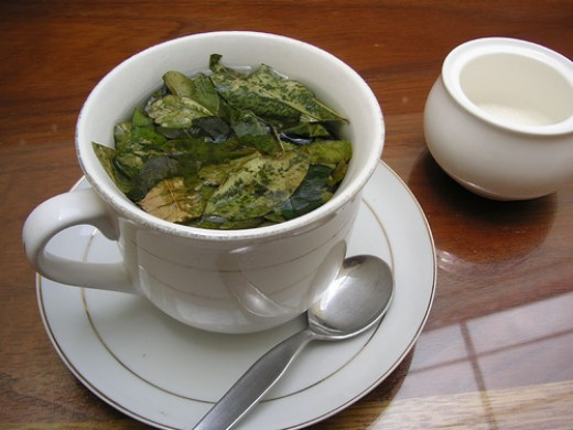 Tea made from Coca Leaves.