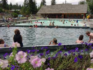 Take a dip in the many natural pools around Lehman Hot Springs