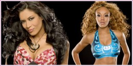 Lets see how long Alicia Fox keeps that WWE Diva Championship title with Melina back in the ring