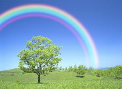 Rainbows are veiwed at 180 degree angle.