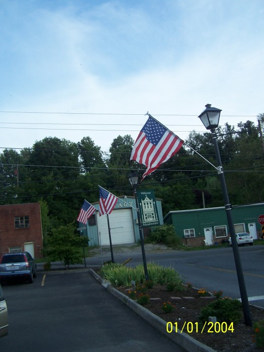 Small American flags on poles in a twon square.